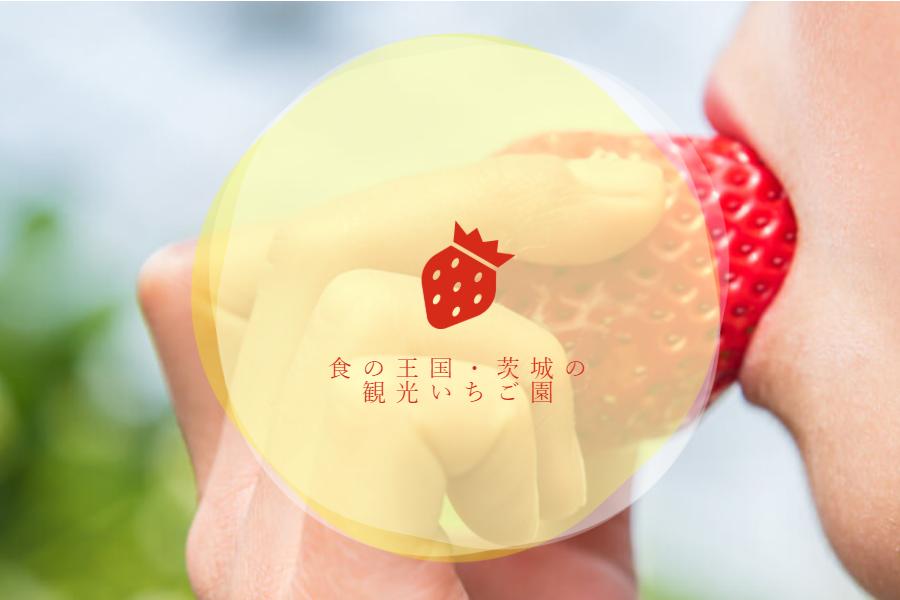 日本初のナリヒラ農法乳酸菌入り野菜®️